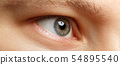 Closeup of amazing male emerald green coloured right eye 54895540