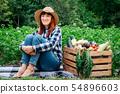 woman, happy, harvest 54896603