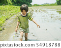 모내기 체험 농가 아이 54918788