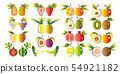 Illustration of a set fruit. 54921182