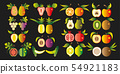 Illustration of a set fruit. 54921183