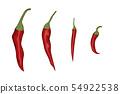 Red chili pepper 54922538
