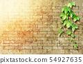 벽돌 담과 잎 54927635