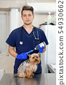 Professional veterinary doctor vaccinates a small 54930662
