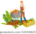 Harvesting Man with Carriage, Carrots Plantation 54938820