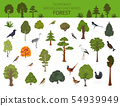 Temperate broadleaf forest and mixed forest biome. 54939949