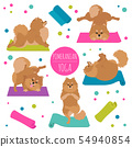 Yoga dogs poses and exercises. Pomeranian clipart 54940854