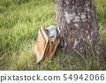 Vintage pumps shoes in bag arouse wanderlust 54942066