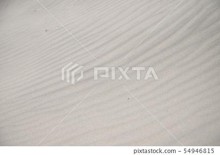 해변의 모래패턴 54946815