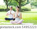 瑜伽中间夫妇室外秀丽公园瑜伽夫妇图象 54952223
