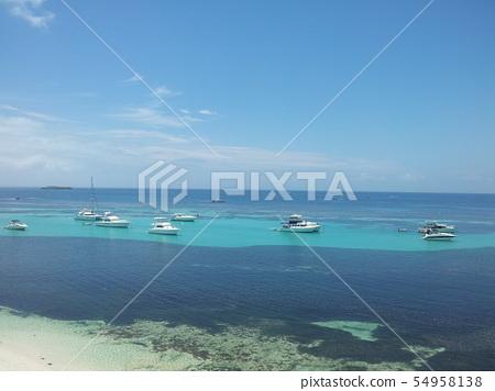海上各式遊艇 54958138