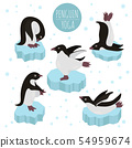 Penguin yoga poses and exercises. Cute cartoon 54959674