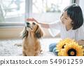 生活与狗女孩 54961259