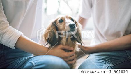 和狗一起生活情侶 54961836