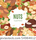 Nuts superfood collection flat cartoon banner vector illustration. Peanut, pistachio, cashew 54964612