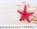Starfish and sea shells 54968817