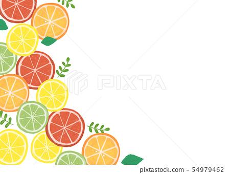 柑橘類水果背景材料 54979462