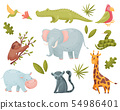 Set of tropical animals. Vector illustration on white background. 54986401