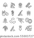 Agricultural commodities of vegetable origin linear icons set 55003727