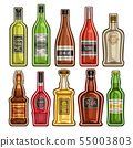 Vector set of different Bottles 55003803