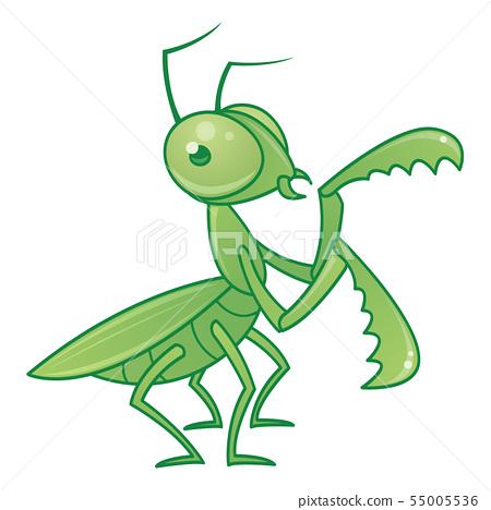 Praying Mantis Cartoon Character 55005536