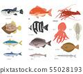 바다 물고기 세트 55028193