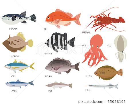 海魚套 55028193