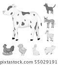 Isolated object of homestead and agriculture logo. Collection of homestead and kitchen stock symbol 55029191