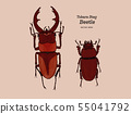 Tokara red stag beetle , hand draw sketch vector. 55041792