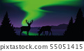 reindeer by the lake with beautiful green polar lights wildlife nature landscape 55051415