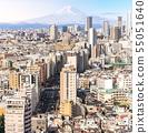 Aerial view Tokyo skyscrapers shinjuku. 55051640