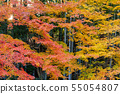 Autumn leaves and Takebayashi Nara Prefecture Nara Park 55054807