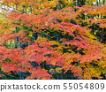 Autumn leaves and Takebayashi Nara Prefecture Nara Park 55054809