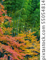 Autumn leaves and Takebayashi Nara Prefecture Nara Park 55054814
