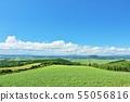 北海道 夏の青空と広い大地 55056816