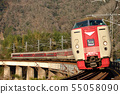 Series 381 L Limited Express Yakumo 9 both running on the line 55058090