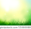 Grass sky sun ladybug summer background 55060088
