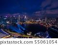 新加坡夜视图 55061054