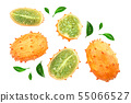 Kiwano or horned melon isolated on white background, Top view. Flat lay. 55066527
