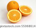 네이블 오렌지 55068614