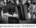 closeup of hands of accordionist playing accordion 55080047