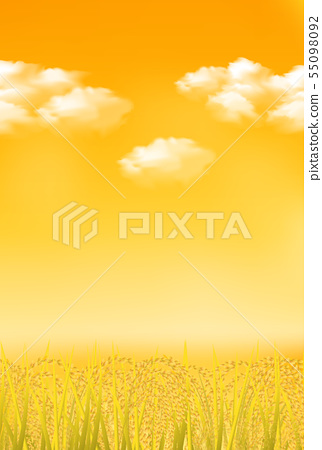 US rice fall fall background 55098092