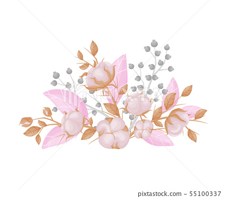 Fruits of cotton on the branches. Vector illustration on white background. 55100337