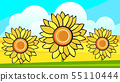 Border With Sunflowers Bouquet And Wild Flower. 55110444