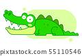 Crocodile Isolated On White Background Funny 55110546