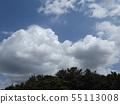 蓝天和夏天Inage海滩公园白色云彩 55113008