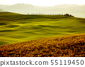 Countryside, green hills Tuscany, Italy 55119450