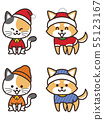 Dog and cat dressed in winter clothes 55123167