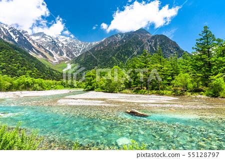 《長野縣》鮮綠色的上高地,竹澤和梓河 55128797