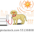 Large dogs suffering from heatstroke-outdoors 55136808